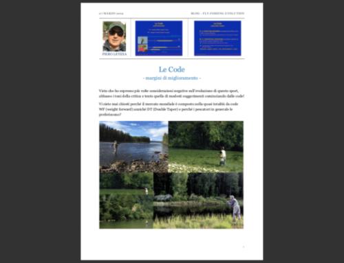 Blog Discussione: Le CODE – Margini di Miglioramento
